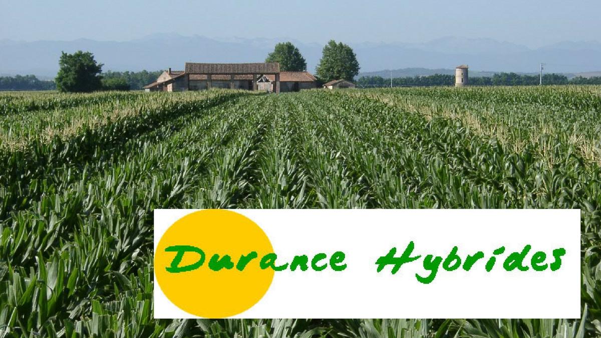 Durance Hybrides