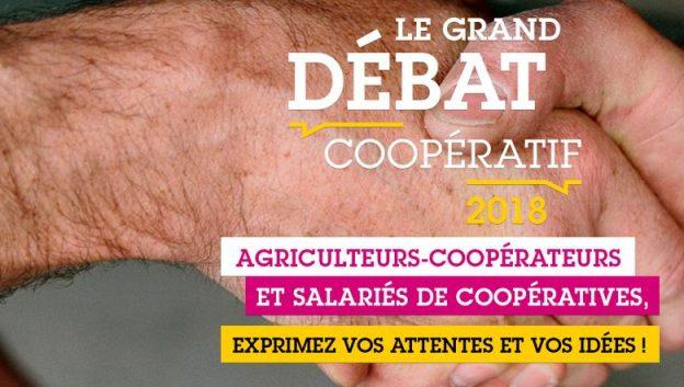 Le grand débat coopératif